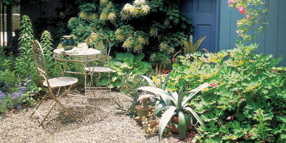 12 Budget-Friendly Ways to Make Your Yard Look Professionally Landscaped