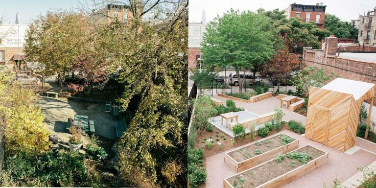 You Can Now Adopt a New York City Garden