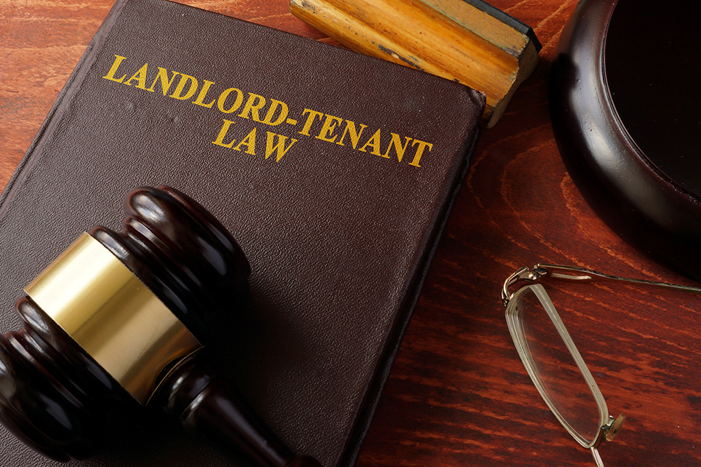 6 Rental Laws Every Tenant Should Know